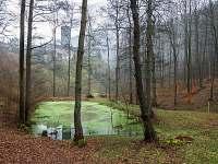 Horní hrad vzdálený 30 min. pěšky od Bylinkového penzionu