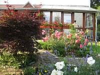 pohled z bylinkové zahrádky na zimní zahradu