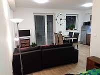 Loučná pod Klínovcem - apartmán k pronajmutí - 23