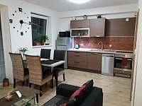 Loučná pod Klínovcem - apartmán k pronajmutí - 22