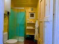 Koupelna - apartmán k pronajmutí Mikulovice