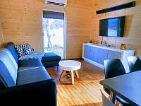 Obývací pokoj s rozkládacím gaučem - apartmán k pronájmu Mikulovice