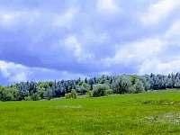 Příroda v okolí apartmánů - Mikulovice