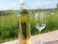 Víno z našich apartmánů - Mikulovice