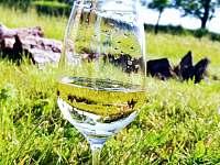 Víno z našich apartmánů