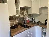 Kuchyň - chata k pronájmu Oldřiš