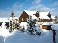 Modrinka v zime - Šindelová