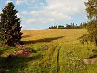 Pohled na protější stráň a les - chalupa k pronájmu Kovářská