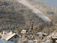 Mikulov u Teplic - penzion na horách - 19