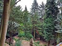 Pohled na chalupu a zahradu z horní části pozemku - Krupka