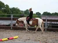 jízdy na koních v kruhovce