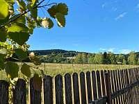 Výhled za zahradou - chata k pronajmutí Bublava