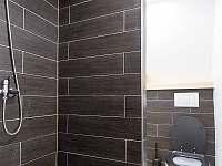 Koupelna WC - pronájem chaty Loučná pod Klínovcem - Háj