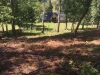zadní zahrada (3) - Kytlice
