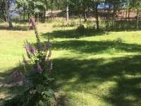 zadní zahrada - Kytlice