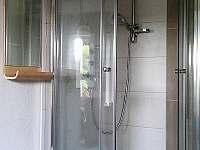 Apartmán a jeho netradičně umístěný sprchový kout - Cvikov