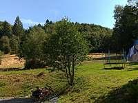zahrada - Mařenice - Dolní Světlá