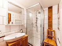 Apartmán Wilda koupelna - k pronajmutí Jiřetín pod Jedlovou