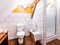 Koupelna apartmán Karasek - k pronájmu Jiřetín pod Jedlovou