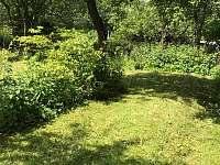 Zadní část zahrady - Jitrava