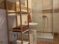 Sprchový kout s WC. - apartmán k pronájmu Sloup v Čechách