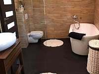 Koupelna rekreační dům Polevsko - ubytování Polevsko