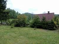 Pohled z chaty na horu Jedlová - ubytování Jiřetín pod Jedlovou - Rozhled
