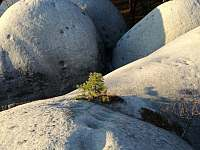 Na nedaleké bílé kameny je to od nás co by kamenem dohodil.