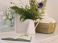 Venkovský domek - chalupa k pronajmutí - 20 Krásná Lípa