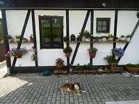 Ubytování u Jany - penzion - 2 Kytlice