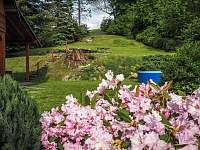 Výhled na jarní zahradu - Dolní Světlá