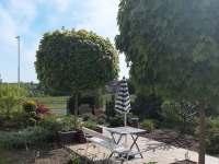 Pohled do zahrady - apartmán ubytování Varnsdorf