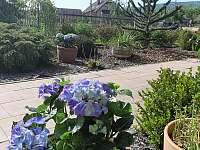 Zahrada - apartmán k pronajmutí Varnsdorf
