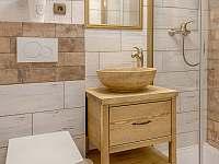 Amartmán2-koupelna - pronájem chalupy Rozstání v Podještědí