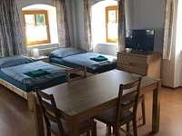 Apartmán k pronájmu - apartmán k pronájmu - 6 Sloup v Čechách
