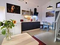 Kuchyně - rekreační dům ubytování Praha - Malá Strana