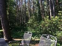 Les patřící k chate - pronájem Mačovice