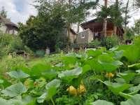 Pohled ze zahrady - pronájem chaty Statenice