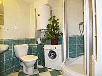 Koupelna - apartmán k pronajmutí Slapy - Ždáň