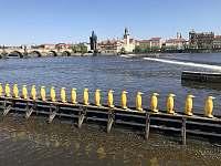 Karlův most - pronájem apartmánu Praha 6