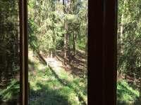 výhled z kuchyňského okna