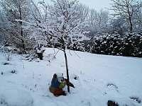 Vedeni- sněhulák - Lštění