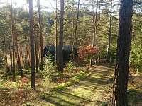 Lesní chata - chata k pronajmutí - 4 Malá Hraštice