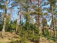 Lesní chata - pronájem chaty - 7 Malá Hraštice