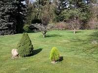 Zahrada - pronájem chaty Zadní Třebaň