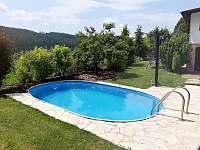 Bazén - chata k pronájmu Nespeky - Ledce