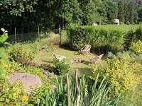 Udržovaná zahrada s tábořištěm
