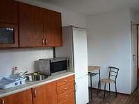 Plně vybavená kuchyňka - Klášterec nad Orlicí