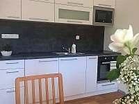 kuchyňská linka - pronájem apartmánu Říčky v Orlických horách