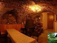 Bartošovice v Orlických horách - chalupa k pronajmutí - 14